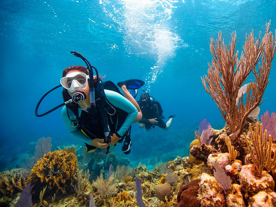 Cours: OWD (Open Water Diver)